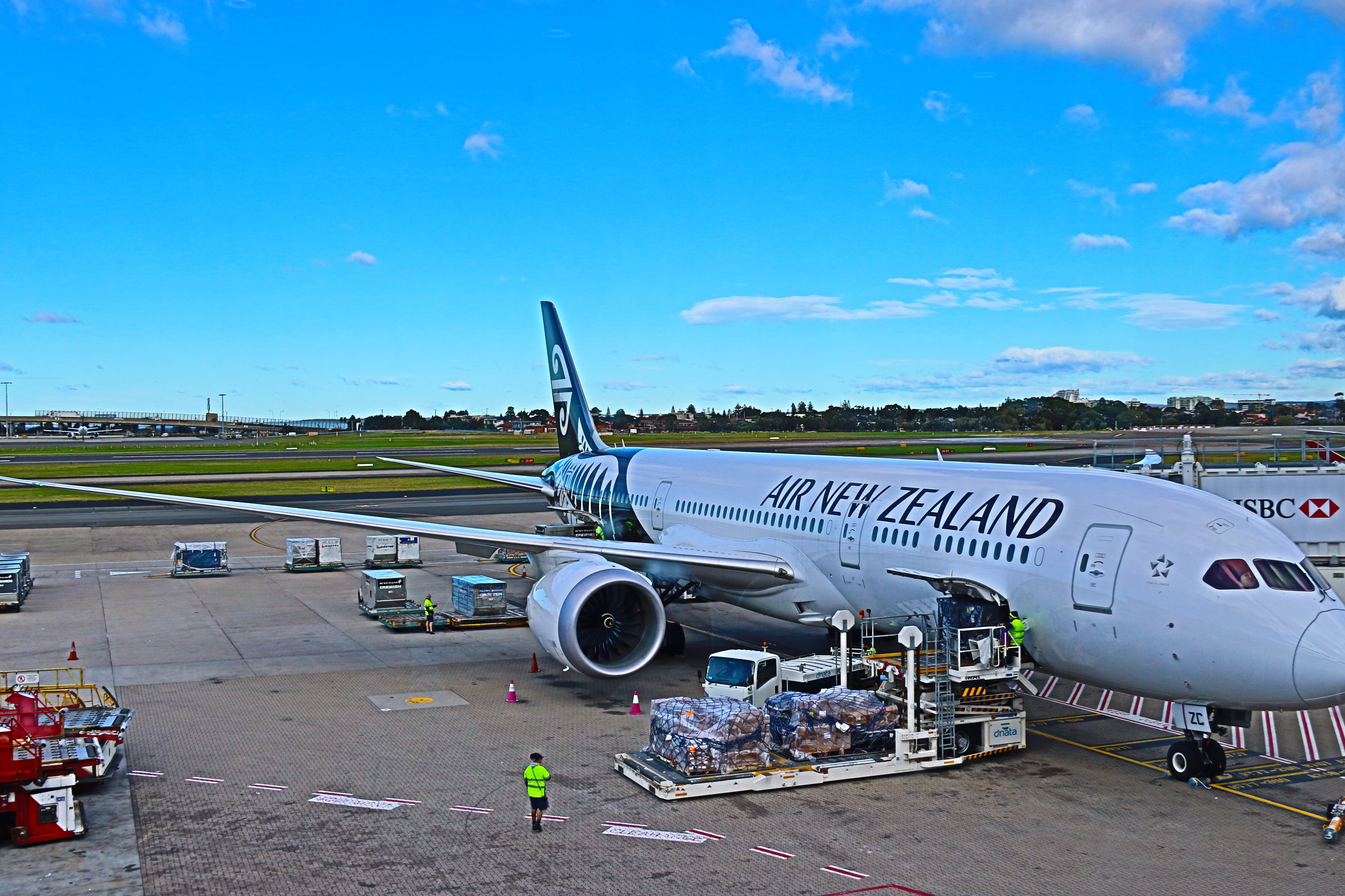 air new zealand essay Management assignment: air new zealand organisational scenario: air new zealand air new zealand is an international and domestic airline group which provide.