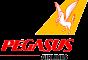 PEGASUS_1000