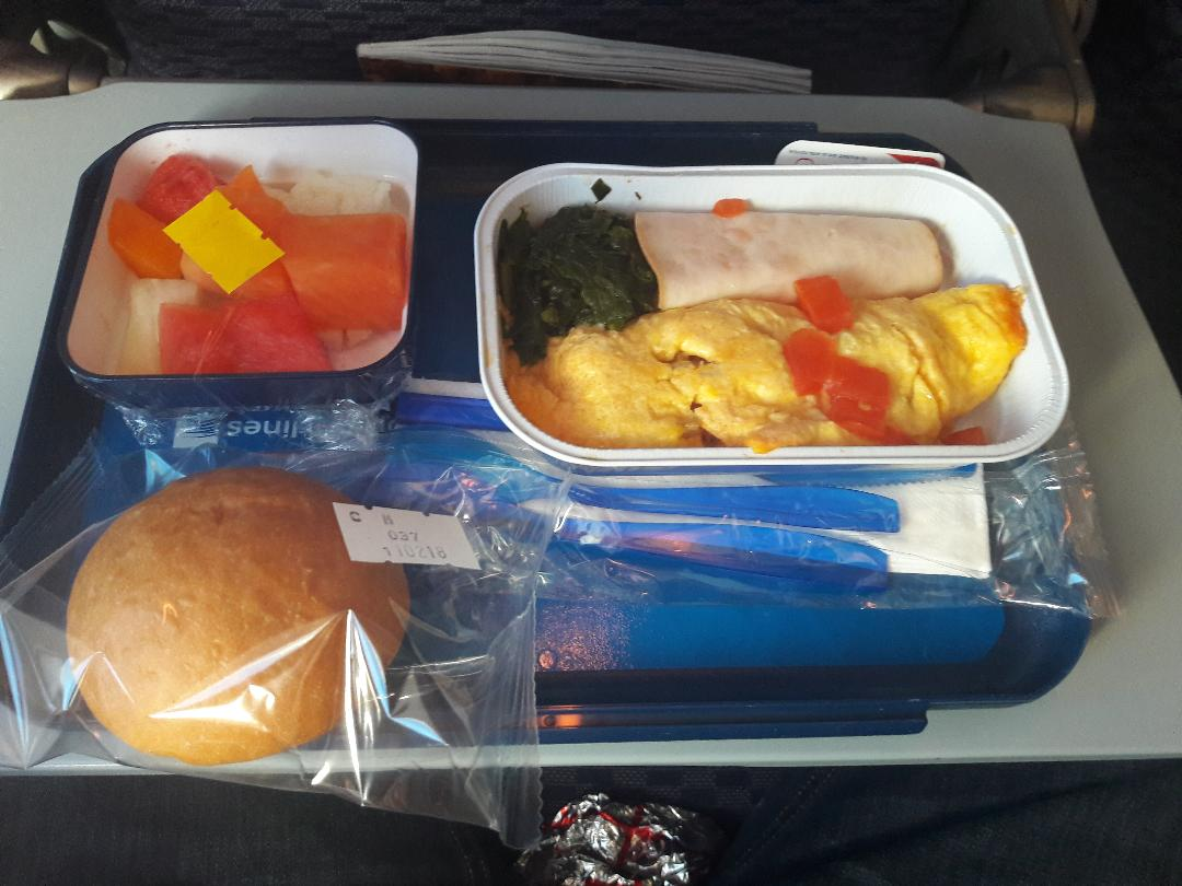 Copa First Class Food Reviews
